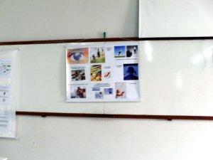 Painel da apresentação da monografia
